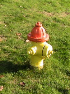 Fire Hydrant Painting Pic 6
