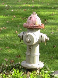 Fire Hydrant Painting Pic 7